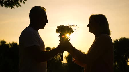 plezant : Silhouette of happy couple meeting at sunset, romantic date, inner paradise