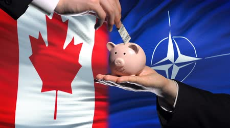 yeniden yapılanma : BRUSSELS, BELGIUM - CIRCA JUNE 2018: Canada investment in NATO, hand putting money in piggybank on flag background Stok Video