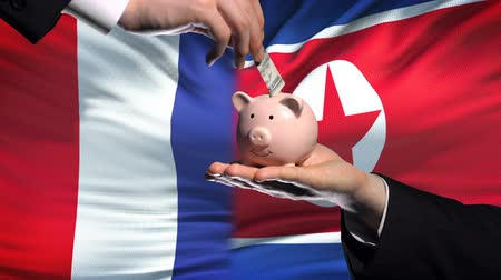 yeniden yapılanma : France investment in North Korea hand putting money in piggybank flag background