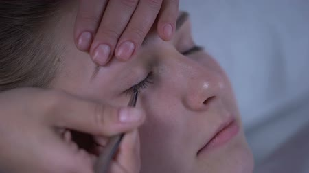 pinça : Master of eyelash extensions adding volume to womans lashes, beauty salon
