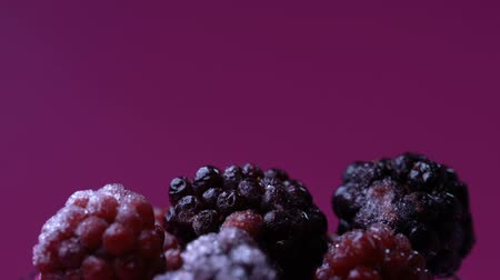 blackberry : Defrosting blackberries and raspberries, natural antioxidant, summer vitamins Stock Footage
