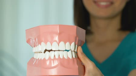 proteza : Dentist showing jaw model, giving lesson on proper teeth and oral cavity care Wideo