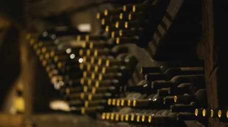 zaprášený : Many wine bottles stacked in cellar, private collection of old rare varieties