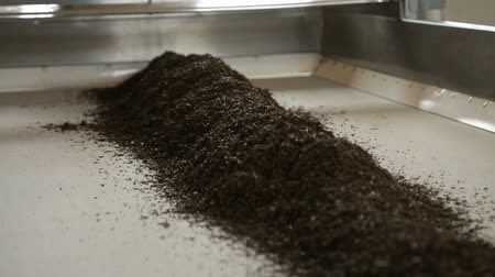Индия : Processing of dry black tea leaves, traditional beverage.