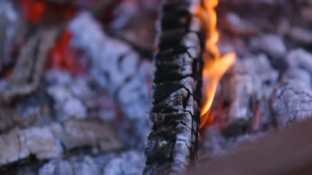 sacramental : Bonfire in courtyard, hearth and home, camping, fire safety outdoors. Stock Footage