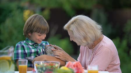 unokája : Grandson showing grandmother lovely kitten, hugging cute pet, new family member