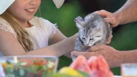домашнее животное : Pretty girl holding tabby kitten, spending time with grandparents. Стоковые видеозаписи