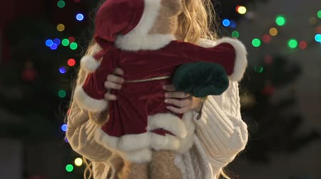 miraculous : Little girl playing with teddy bear in Santas costume, New Year atmosphere Stock Footage