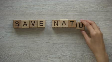 fenntartható : Save nature, woman making phrase of cubes, holding plant in hands, deforestation