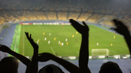 arquibancadas : Football fans cheering favorite team during match on overcrowded stadium, sports