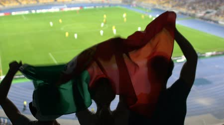 pontão : Soccer fans with Portuguese flag jumping in stands, cheering for favorite team
