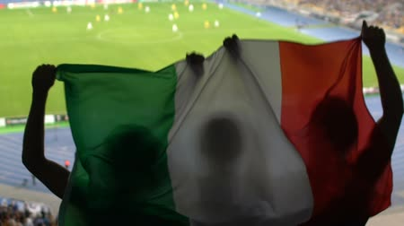 italiaanse vlag : Soccer fans with Italian flag jumping in stands, cheering for favorite team Stockvideo