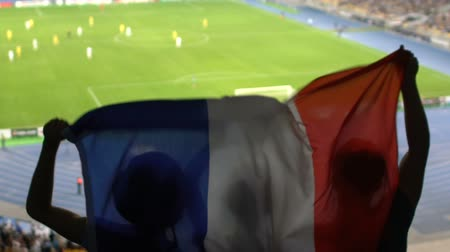 french team : Soccer fans with French flag jumping in stands, cheering for favorite team