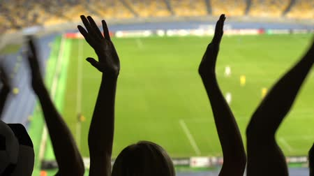 torcendo : Happy female and male football supporters watching game, enjoying team victory Stock Footage