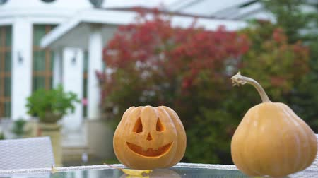 questão : Pumpkin Jack on table in yard, preparation for Halloween party, creativity