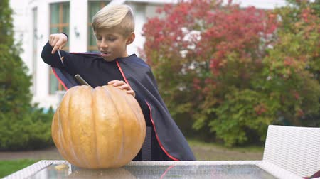 zvedák : Excited boy in vampire costume carving pumpkin jack-o-lantern for Halloween