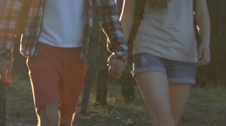 genç çift : Happy young couple of hikers trekking in forest, holding hands and hugging. Stok Video