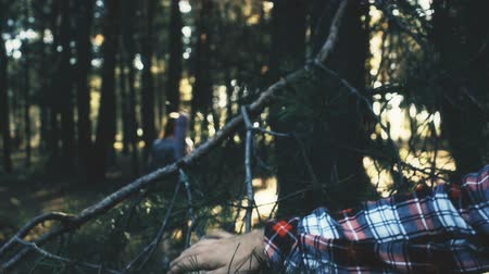 maniac : Bearded maniac watching for lost female backpacker in forest. Stock Footage