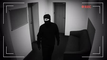 ladrão : Robber in mask hacking surveillance camera in corporative building, criminal Vídeos