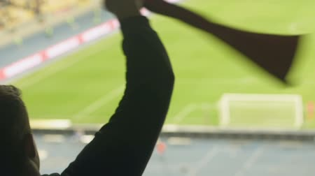 triunfar : Happy football fans waving scarf on stadium, favourite team support, close up Vídeos