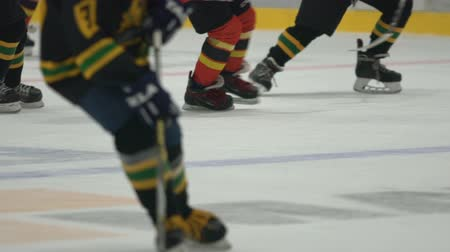 striker : Championship cup finals game, two teams playing hockey on ice at stadium