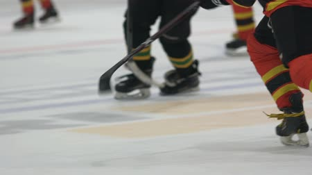 striker : Slow motion legs of athletes skating, two teams playing hockey on ice at stadium Stock Footage