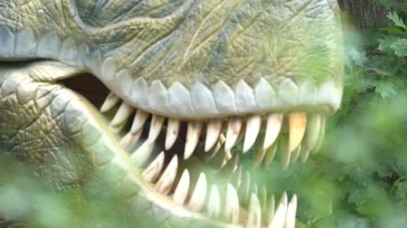 jura : Jaw and fangs of carnivour predator dinosaur, archaeology and paleontology