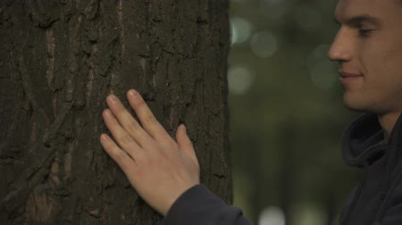 sentiment : Male touching and embracing family tree, contact with ancestors, genealogy Stock Footage