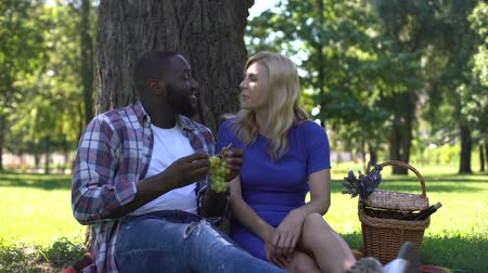 grape basket : Mixed race couple eating grapes in park and speaking, spending time together