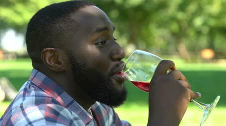 workweek : Bearded man drinking wine and talking to friend during picnic in park, relax