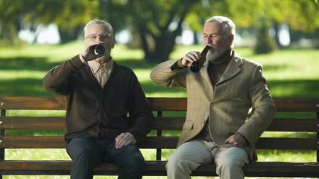 remembering : Two happy senior friends clinking beer bottle in park, remembering young ages Stock Footage
