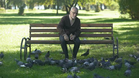 bread stick : Smiling elderly man relaxing and feeding pigeons in park, happy retirement