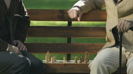 estratégico : Two pensioners playing chess on park bench, game strategy, brain exercise, hobby