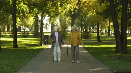 cheerfulness : Two smiling old women talking walking in park, nursing home for elderly, leisure Stock Footage