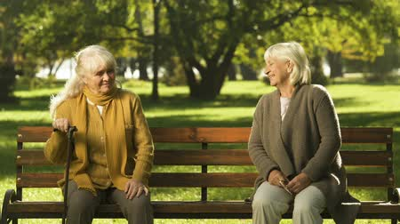 deceased : Old lonely lady missing her good friend, sitting in park, unhappy pensioner Stock Footage