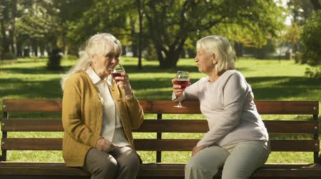 şarap : Two old ladies drinking wine and talking on bench in park, happy golden years Stok Video