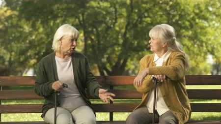 aggrieved : Two senior ladies arguing and sitting on bench in park, grumpy elders, dispute Stock Footage