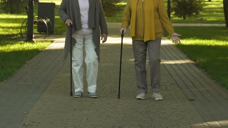 osteoarthritis : Pensioners walking with stick in park, aging concept and senior arthritis