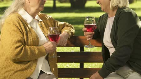 sąsiadka : Female neighbors drinking wine in park, relaxing together on weekend, gossiping Wideo