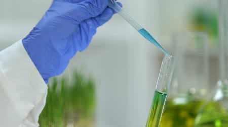 chemical agent : Laboratory assistant mixing green and blue reagents, conducting experiments