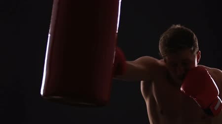 férfias : Professional boxer practicing with punching bag, motivated and aimed to win Stock mozgókép