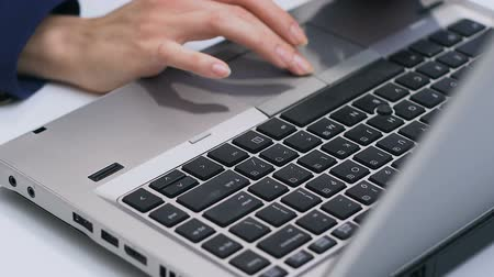 főnök : Businesslady typing on laptop, sales manager working with data, hands closeup
