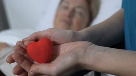 cardiological : Volunteer holding toy heart in palms, sick female patient sleeping on background Stock Footage