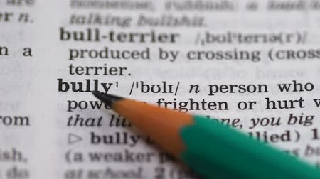 transcription : Bully, word pointed in english vocabulary, aggressive person humiliating others