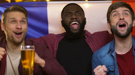 french team : Sports fans with French flag cheering for national team, watching game in pub