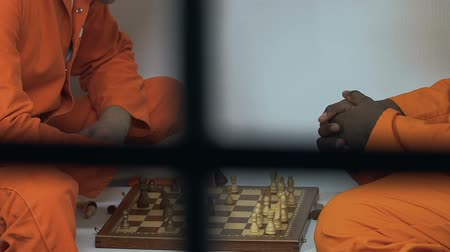 vazba : Multiracial male cellmates playing chess in spare time, prison entertainments