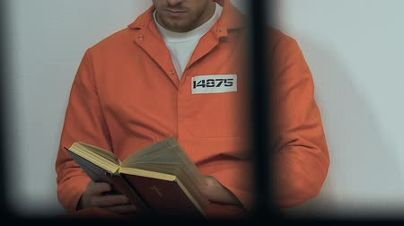 biblia : Caucasian male prisoner reading holy bible in cell, hope for forgiveness