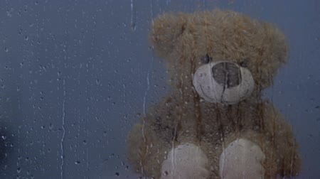 ぬいぐるみの : Teddy bear toy sitting behind rainy window in orphanage, water drops dripping 動画素材