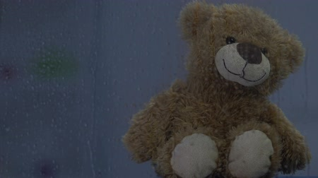 ぬいぐるみの : Brown teddy bear sitting behind rainy window, lighting blinking, childhood 動画素材