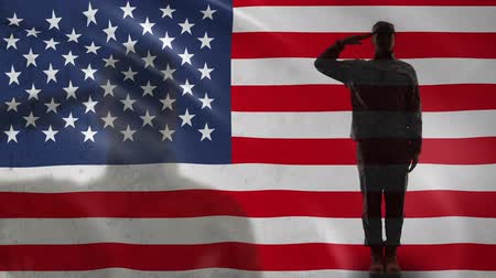 peacekeeping : American soldier silhouette saluting against national flag, military forces